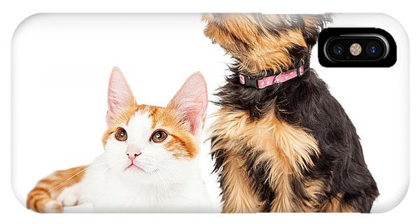 Cute Puppy And Kitten Sitting To Side  IPhone Case