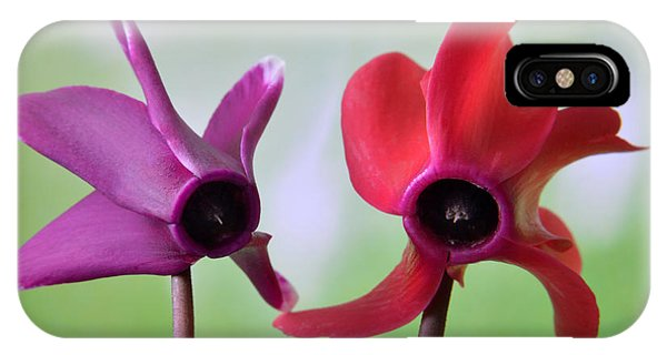 Cyclamen Duet. IPhone Case