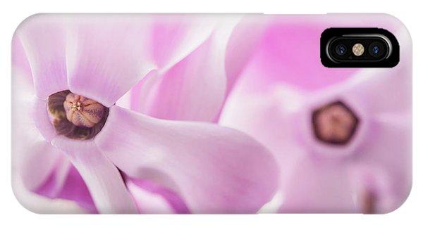 Buy Art Online iPhone Case - Cyclamen Hearts by Jenny Rainbow