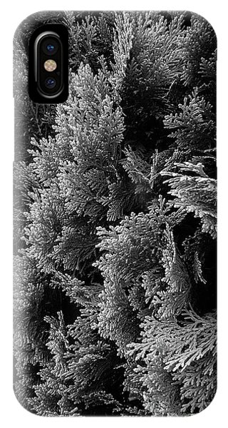 Cypress Branches No.1 IPhone Case