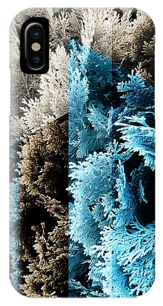 Cypress Branches No.3 IPhone Case