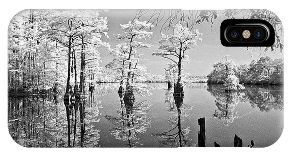 Cypress In Walkers Mill Pond IPhone Case
