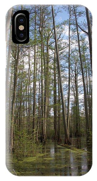 Cypress Pond IPhone Case