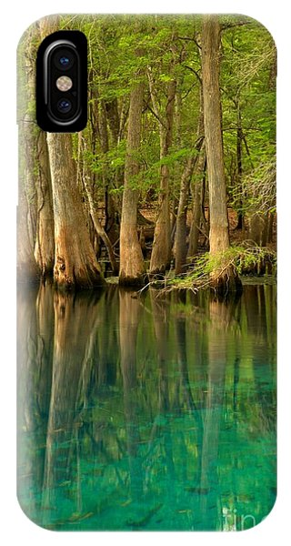 Cypress Reflections In Blue IPhone Case