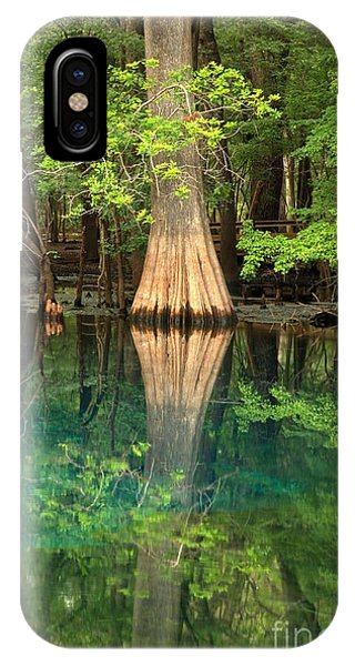 Cypress Reflections In Manatee Spring Waters IPhone Case