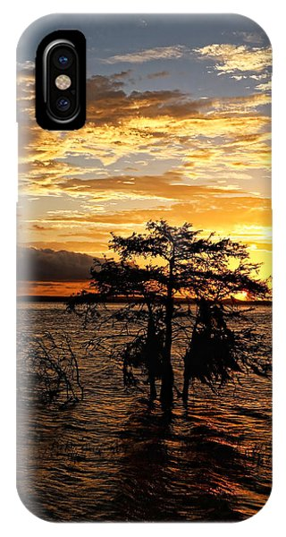 Cypress Sunset IPhone Case