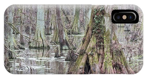 Cypress Swamp 01 IPhone Case