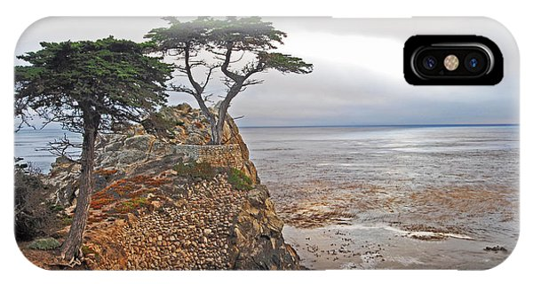 Cypress Tree At Pebble Beach IPhone Case