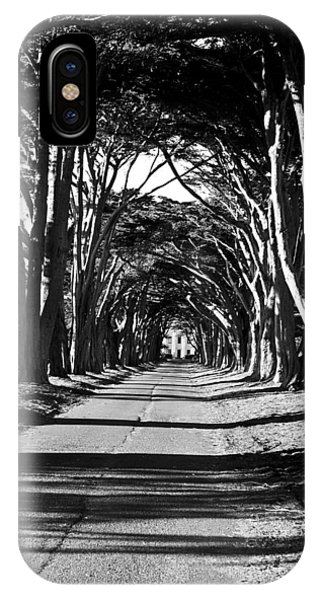 Cypress Tree Tunnel IPhone Case