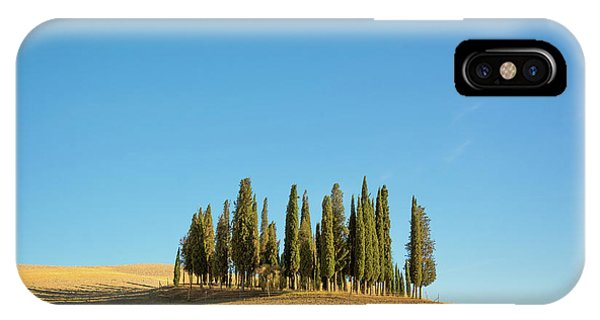 Cypress iPhone Case - Cypress Trees by Delphimages Photo Creations