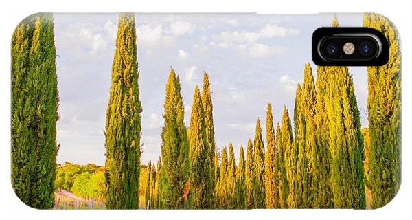 Tree iPhone Case - Cypress Trees In Tuscany by Ariane Moshayedi