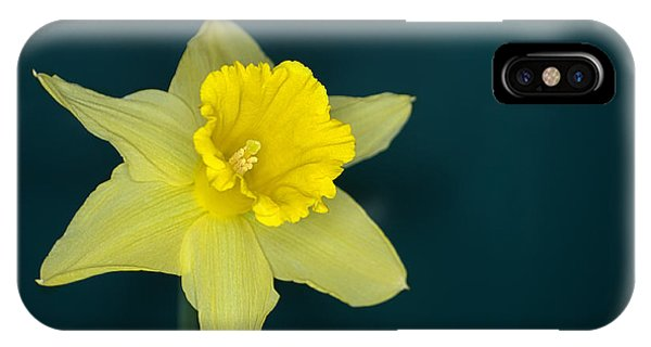 iPhone Case - Daffo The Dilly by Chris Day