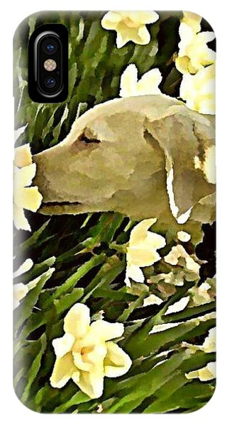iPhone Case - Daffodil Dog by Raven Hannah