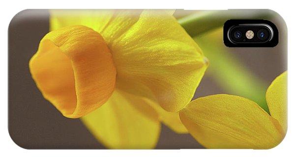Daffodil Sunrise IPhone Case
