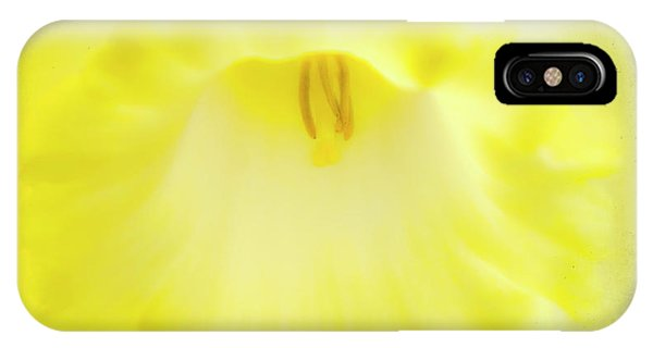 Yellow Trumpet iPhone Case - Daffodils Are Yellow by Meirion Matthias