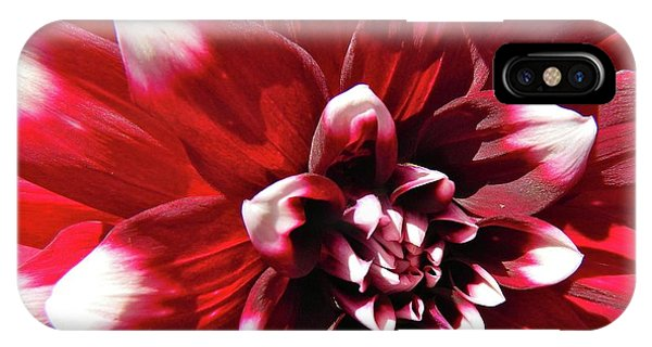 Dahlia Defined IPhone Case