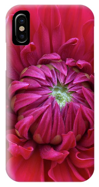 Dahlia Heart IPhone Case