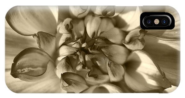 iPhone Case - Dahlia Named Who Dun It by J McCombie