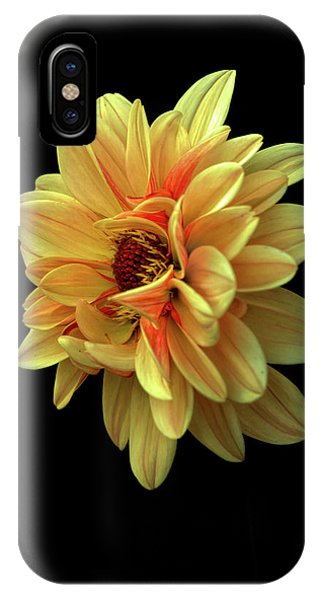 Dahlia IPhone Case