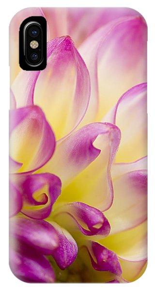 Dahlia Petals 5 IPhone Case