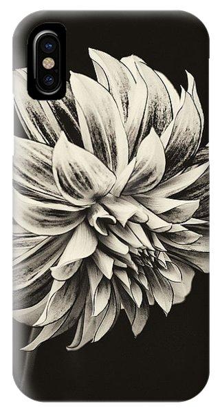 Fall Flowers iPhone Case - Dahlia by Robert Fawcett