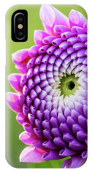 Dahlia IPhone Case