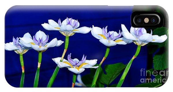 Dainty White Irises All In A Row IPhone Case