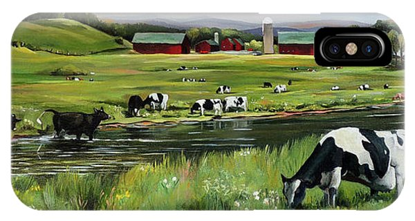 New England Barn iPhone Case - Dairy Farm Dream by Nancy Griswold