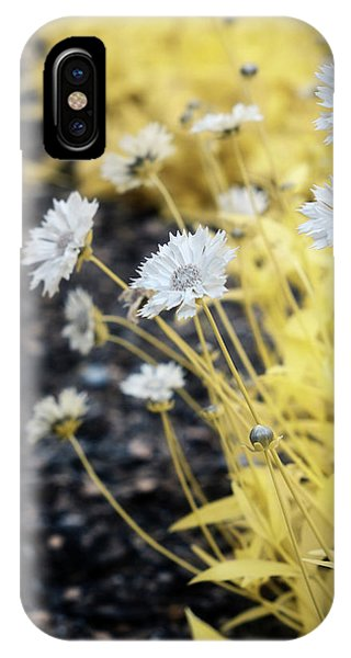 Daisey IPhone Case