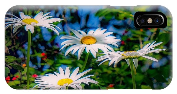 Daisies And Friends IPhone Case