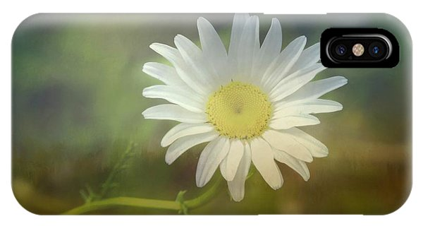 Daisies Don't Tell IPhone Case