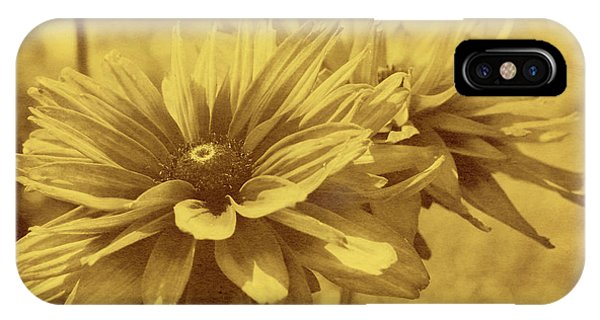 Daisies From Yesterday IPhone Case