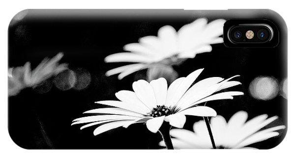 Daisies In Black And White IPhone Case