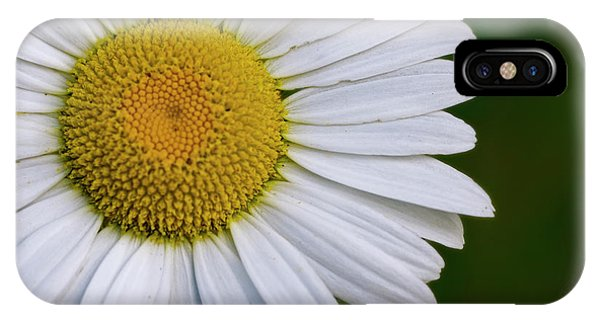 Daisy Detail IPhone Case