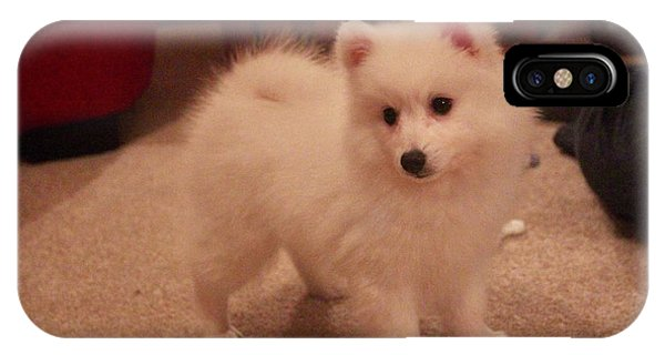 Daisy - Japanese Spitz IPhone Case