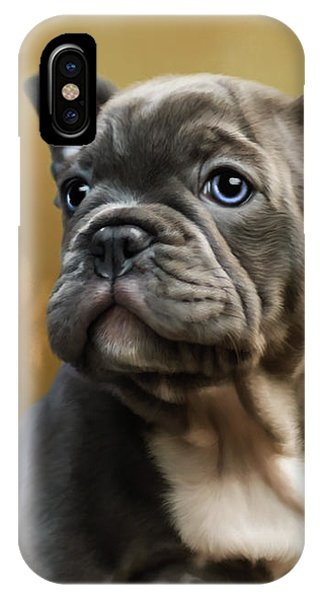 French Bull Dog iPhone Case - Daisy - Puppy Art by Jordan Blackstone