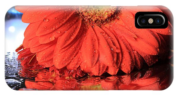 Daisy Reflections IPhone Case
