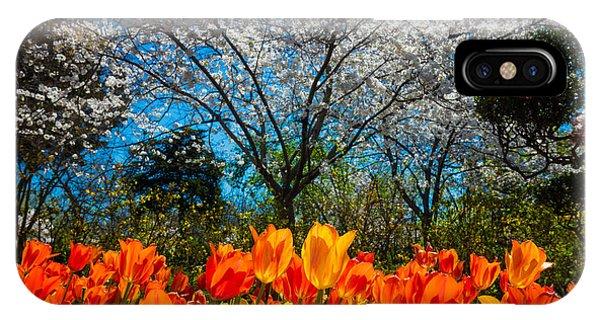 Horticulture iPhone Case - Dallas Arboretum Tulips And Cherries by Inge Johnsson