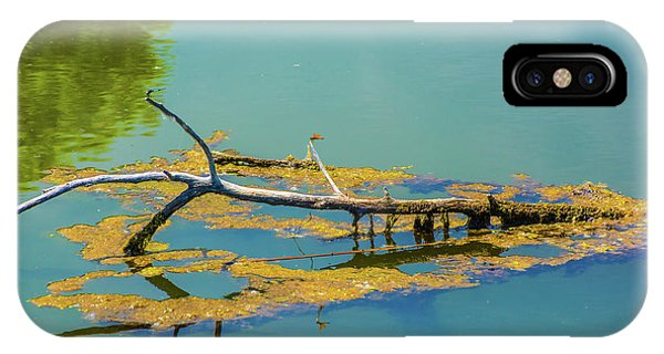 Damselfly On A Lake IPhone Case