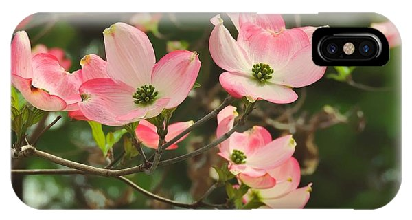 Dance Of The Dogwood IPhone Case