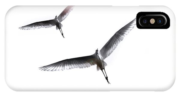 Dance Of The Egrets IPhone Case