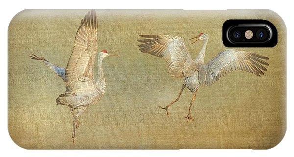 Dance Ritual II, Sandhill Cranes IPhone Case