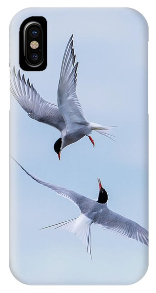 Dancing Arctic Terns IPhone Case