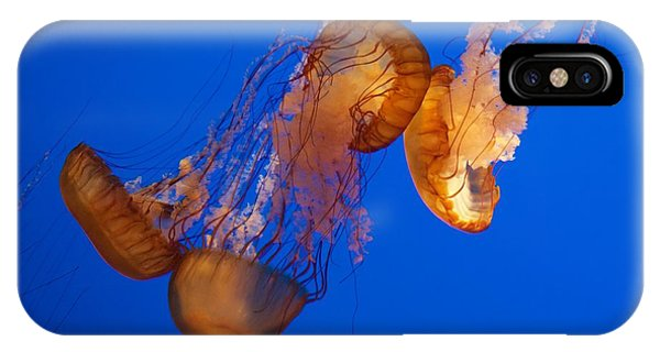 Dancing Sea Nettles IPhone Case