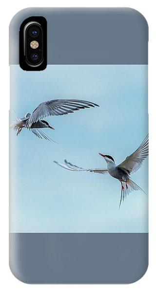 Dancing Terns IPhone Case