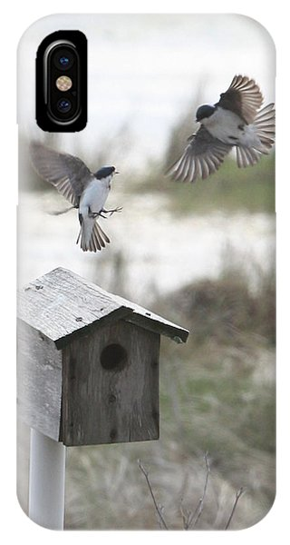 Dancing Tree Swallows IPhone Case