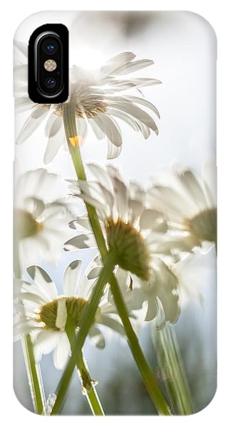 Dancing With Daisies IPhone Case
