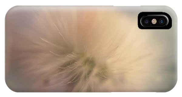 Dandelion 2 IPhone Case