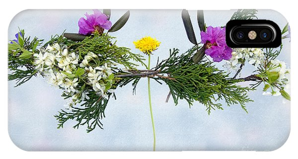 Dandelion Balancing Act With Blue Background IPhone Case