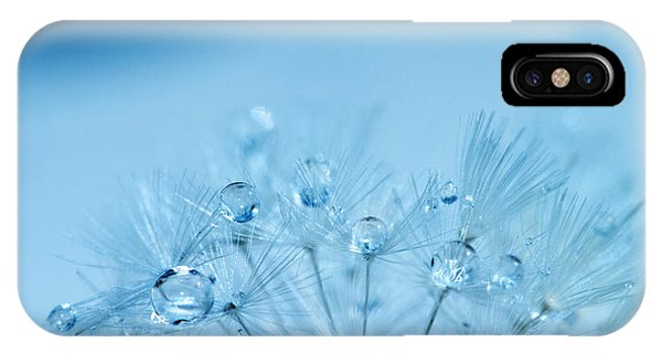 Dandelion Bouquet IPhone Case